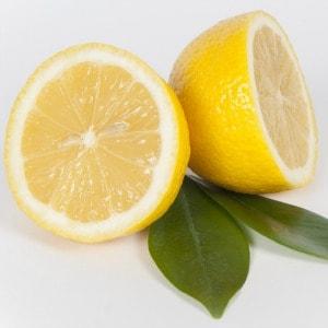 Lemon Oil Sliced 300px