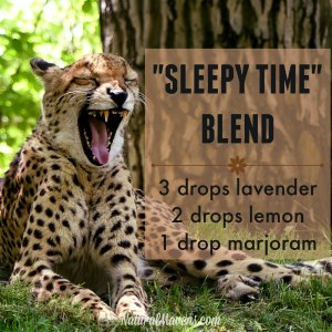 Sleepy Time Essential Oil Blend