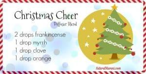 Christmas Cheer Diffuser Blend - Natural Mavens
