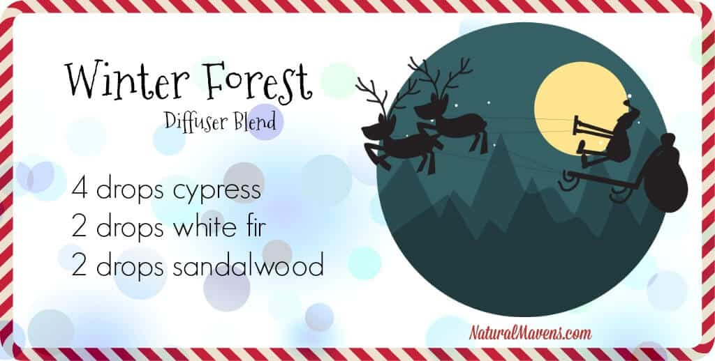 Winter Forest Diffuser Blend for Christmas - NaturalMavens.com