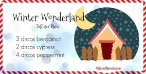 Winter wonderland diffuser blend - NaturalMavens.com