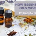 How Essential Oils Work – All You Need to Know