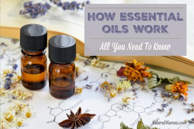 How Essential Oils Work