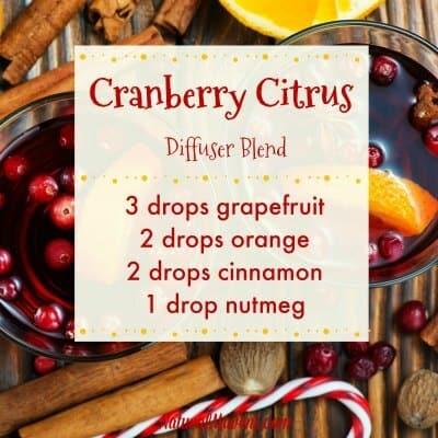 Cranberry Citrus Diffuser Blend