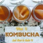 What Is Kombucha and How to Make It