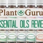 Plant Guru Essential Oils Review: Quality at a Fair Price